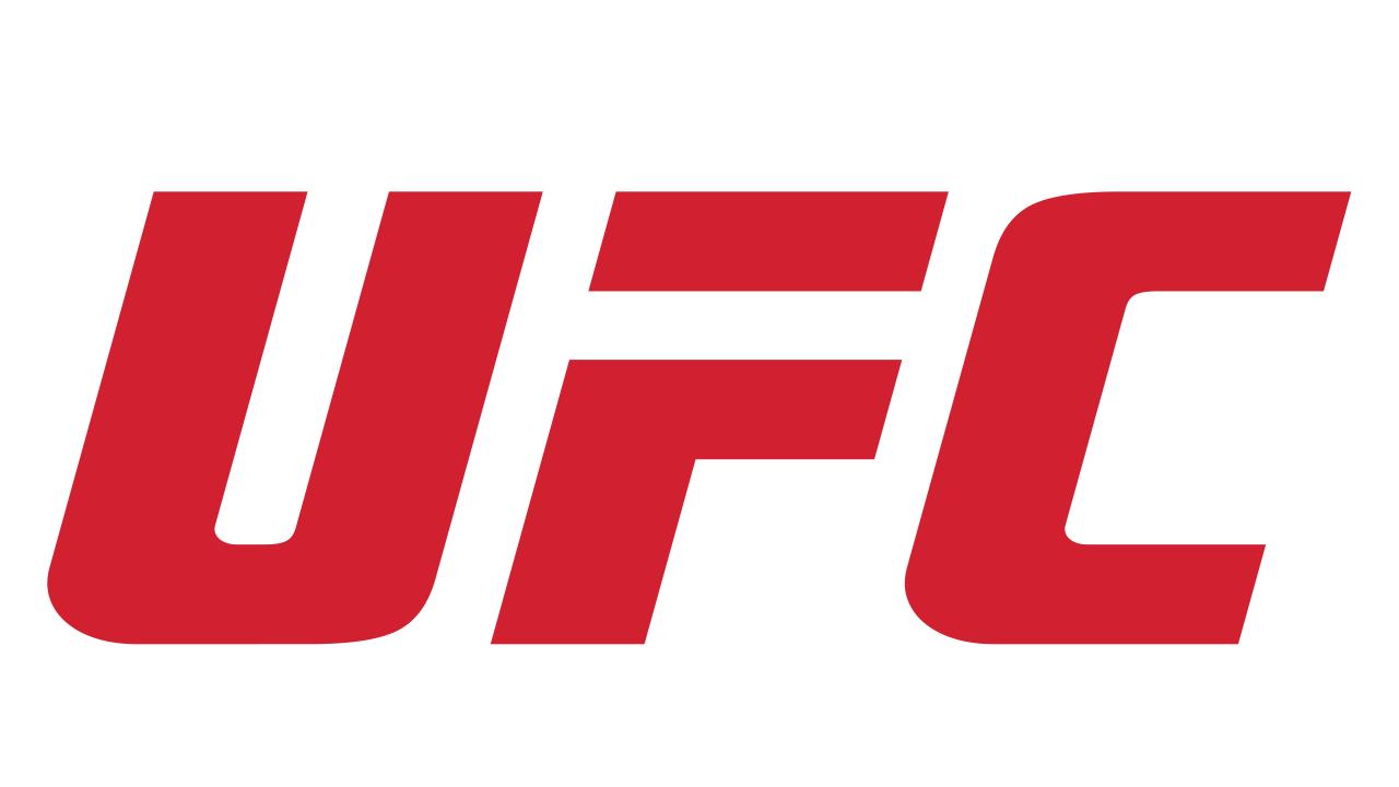 UFC Fight Night 2019